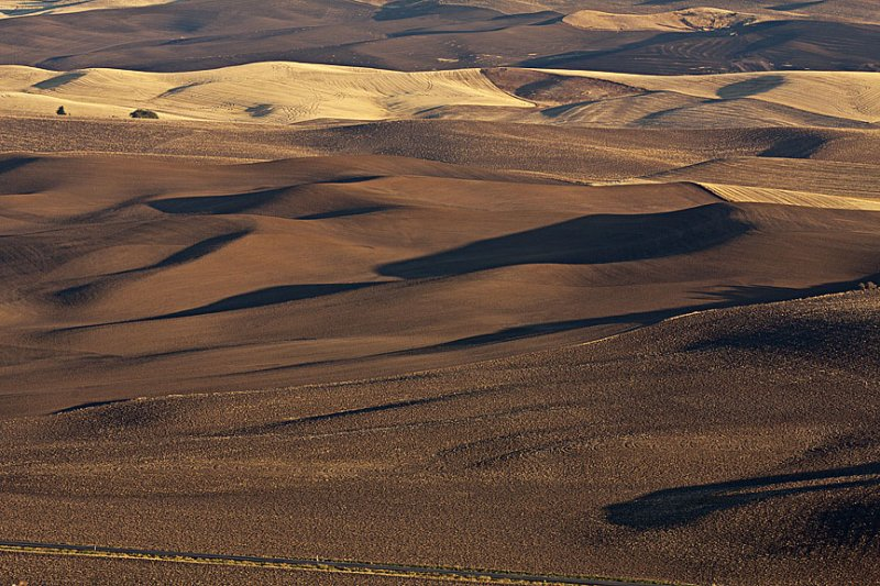 October Palouse 152