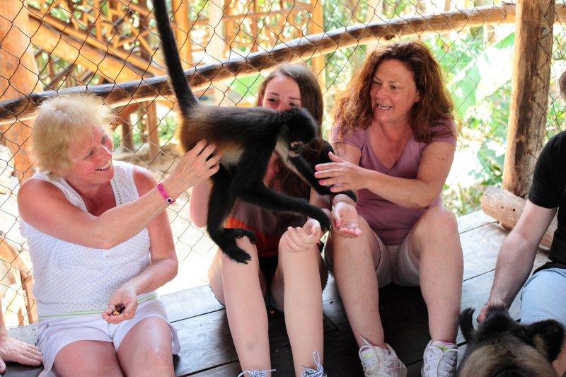 monkeys_228.JPG