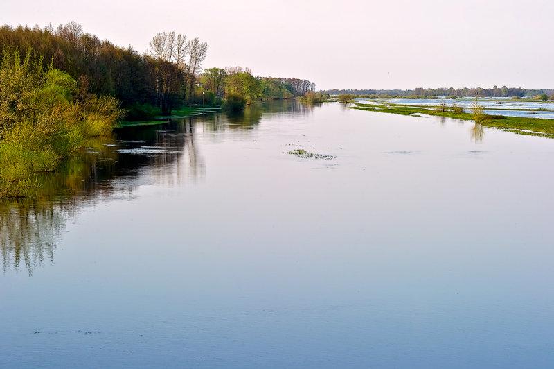 The Narew River