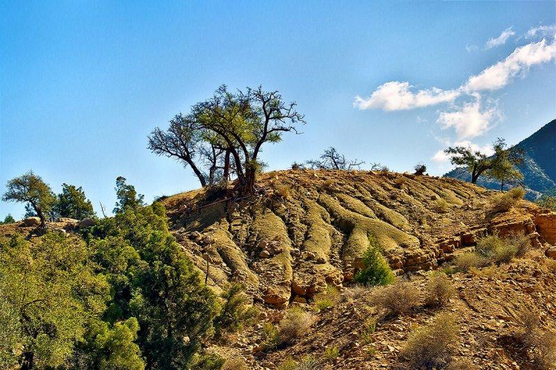 Middle Atlas Mountains