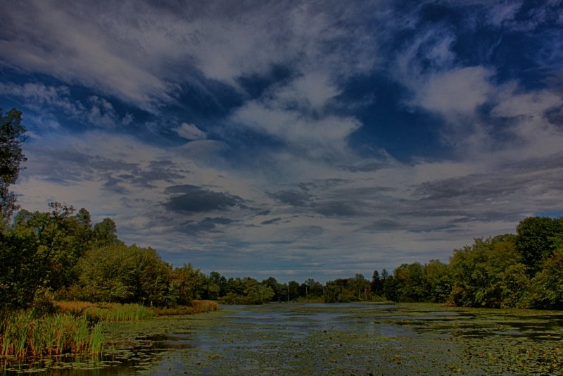 Local Pond in HDR<BR>September 11, 2011