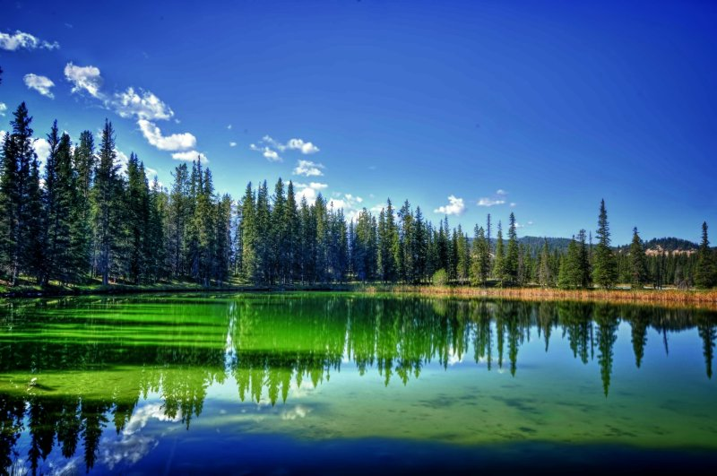 Small Jasper Area Pond