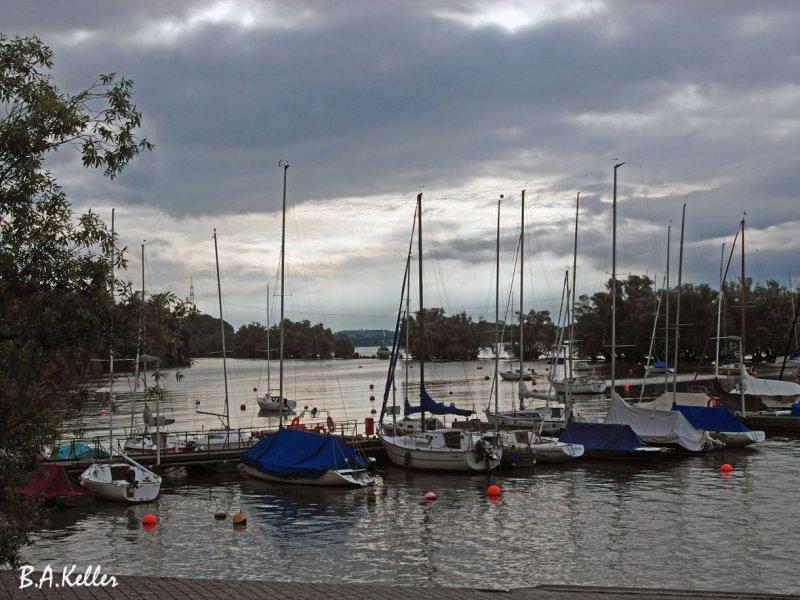 Yachthafen Niederwalluf