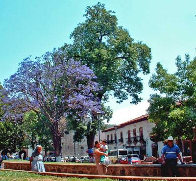 Abril en la Plaza Chica