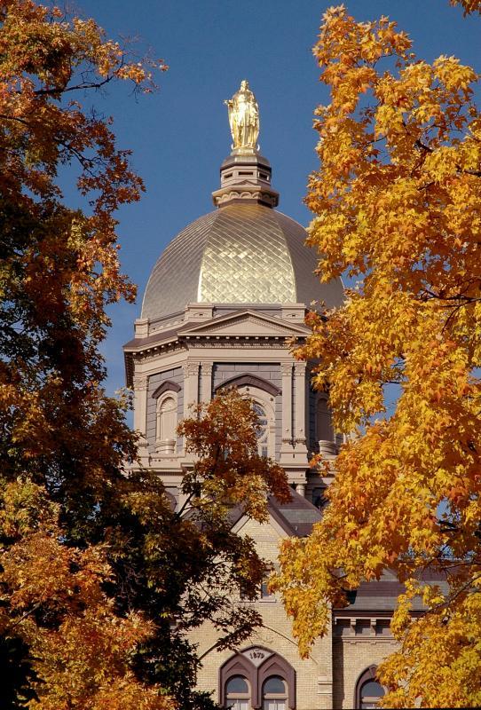 Golden dome_1.jpg