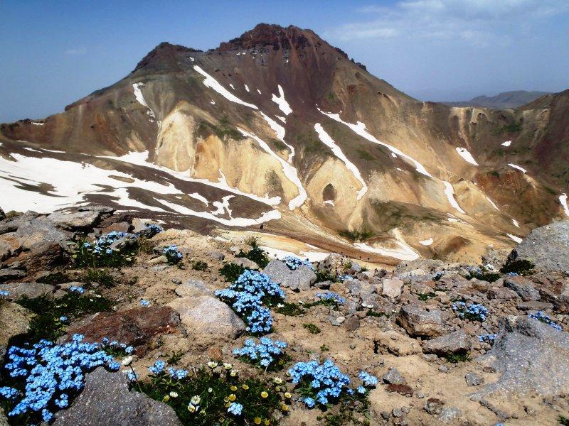 Peak with flowers