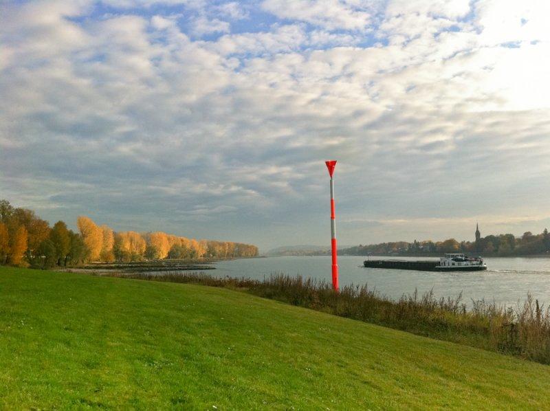 Autumn at the river rhine - Herbst am Rhein