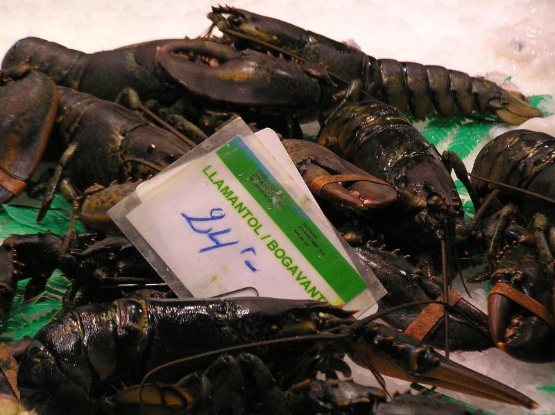 Barcelona-boqueria lobst.JPG