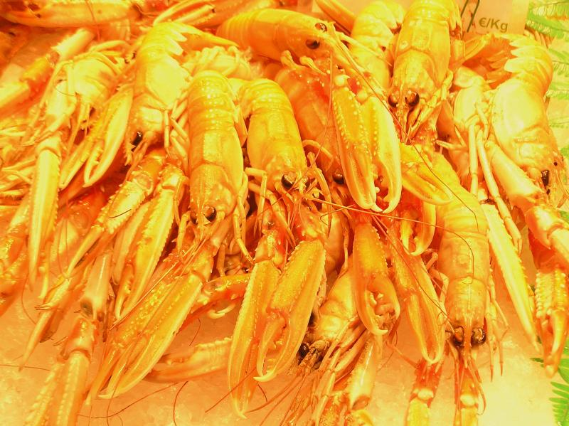 Barcelona-boqueria shrimp2.JPG
