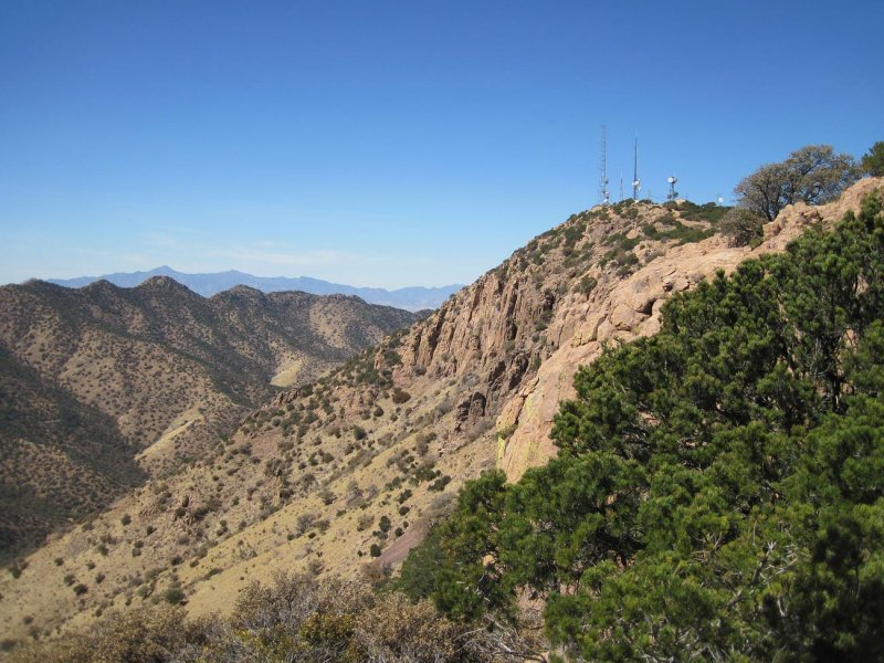 Mule Mountains - looking north from atop Juniper Flats - view 1