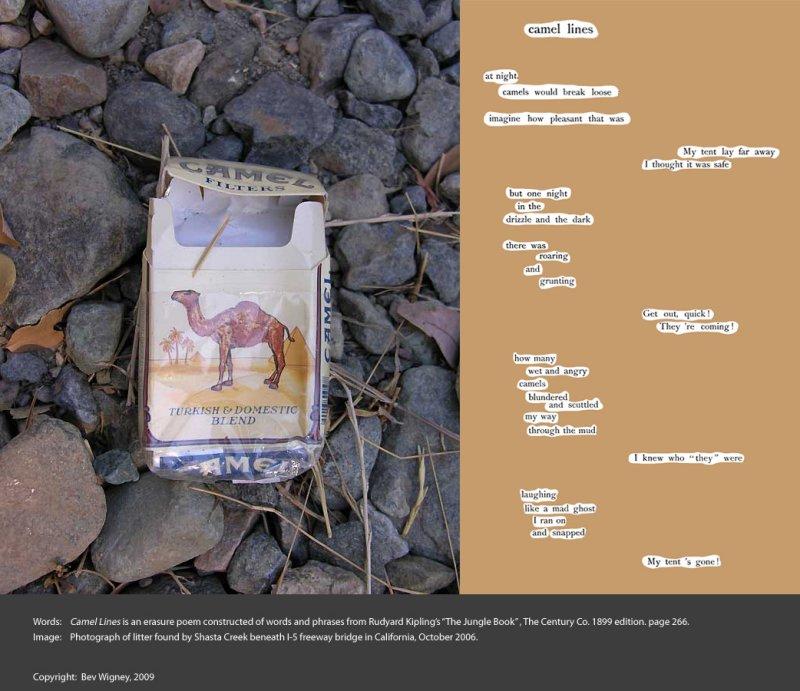 camel-lines.jpg