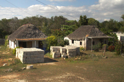 Homes along the way, Roofs made from Royal Palm