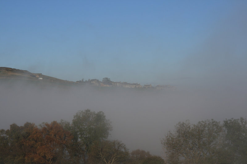 Foggy Morning by me unmangled