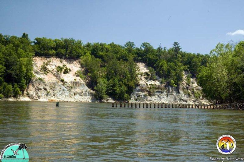Alum Bluff from upriver 8294.jpg
