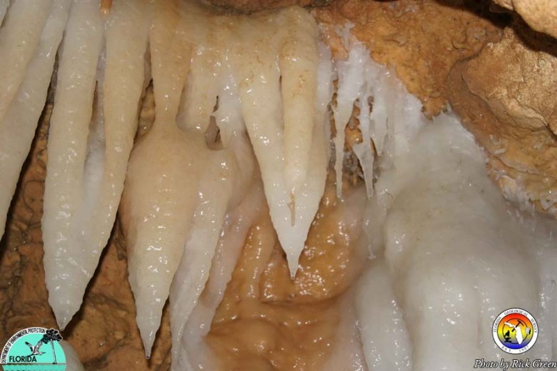 Trawick Cave.jpg