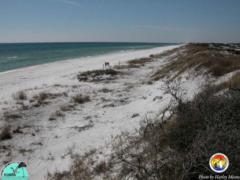 CoastalWaltonCo2.jpg