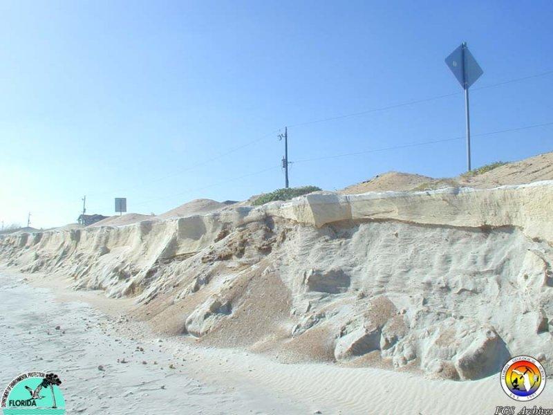 MMSNEFlStudy-Coastal ErosionFGCo.JPG