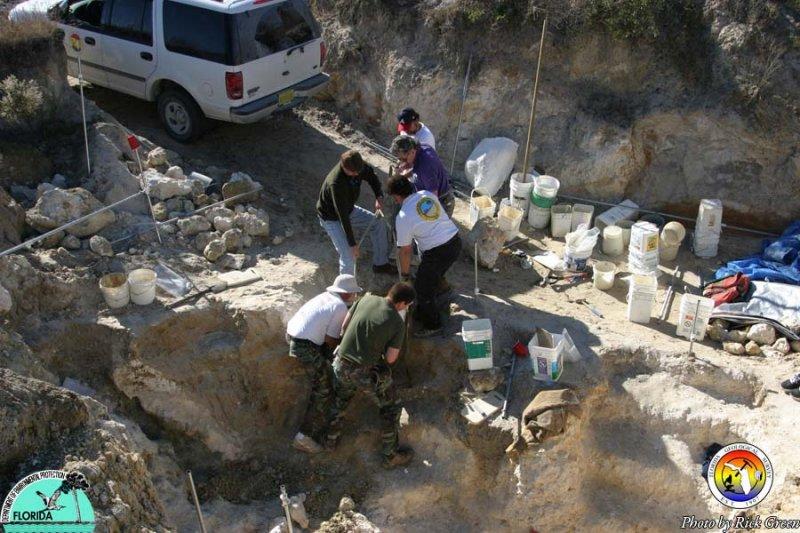 Sinkhole in Alachua County.jpg