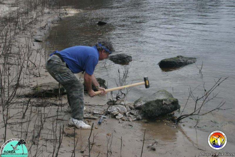 Will Evans breaks Silicified Suwannee Limestone.jpg