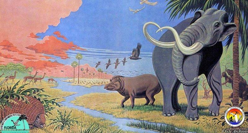 Pleistocene landscape.jpg
