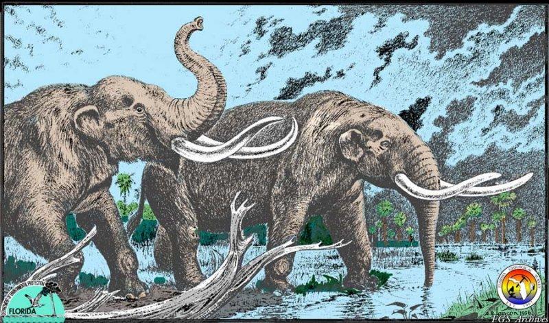Pleistocene mastodon.jpg