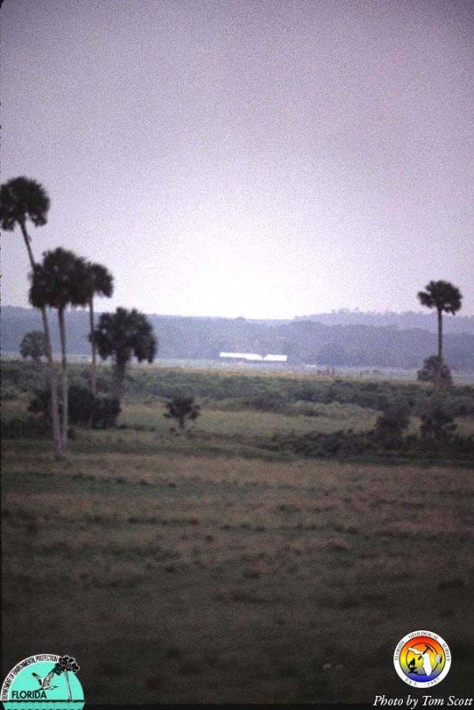 Lake Wales Ridge from Okeechobee Plain.jpg