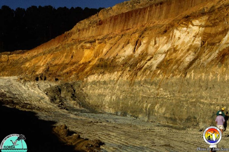 Fullers earth mine Gadsden Co Dogtown Mbr4.jpg