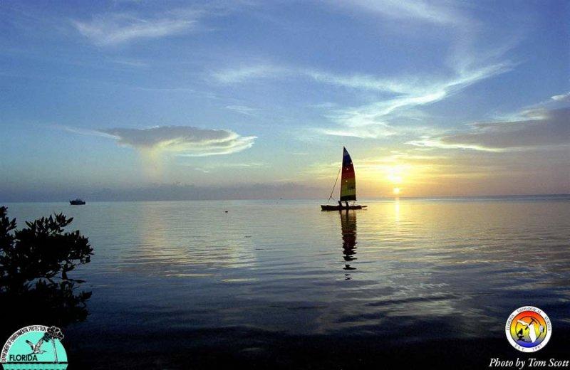 Florida Bay Hobie Cat sunset.jpg