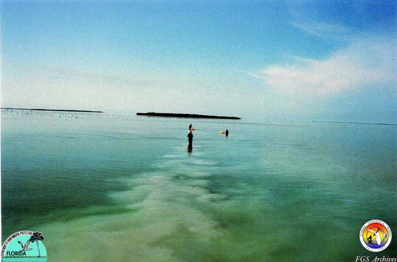 Keys Florida Bay sampling2.jpg