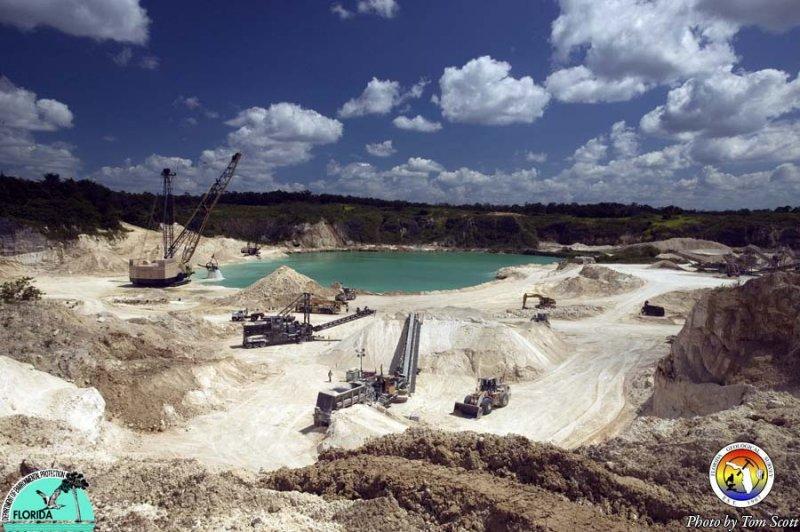 Crystal River Quarry Eocene.jpg