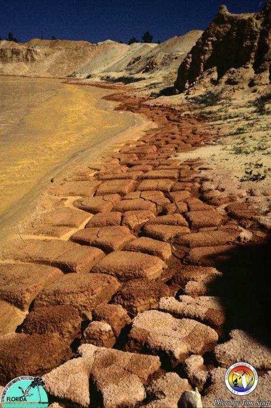 Mud cracks Walton Co Diamond Sand pit 2.jpg