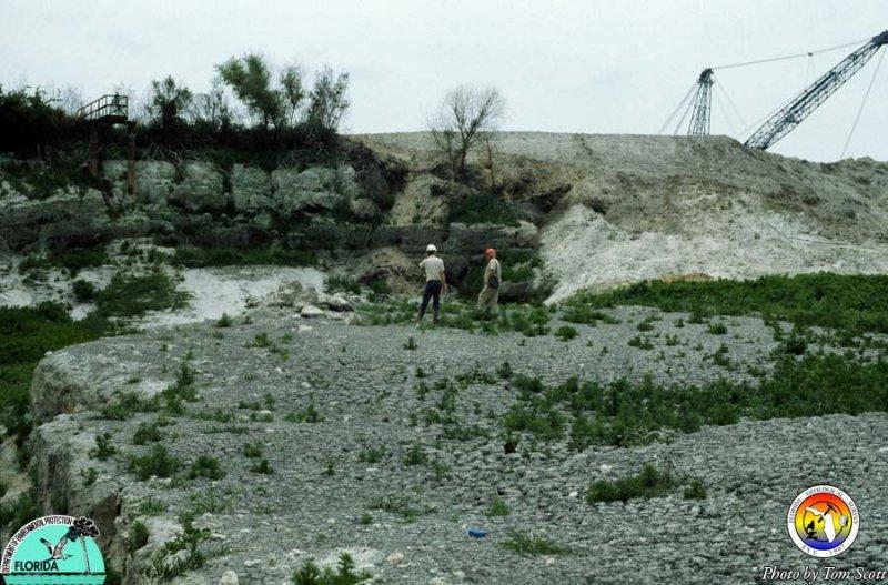 Old phosphate mine Polk Co.jpg