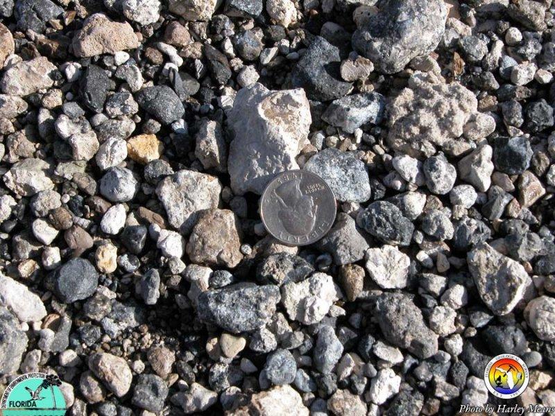 Pebble phosphate.jpg