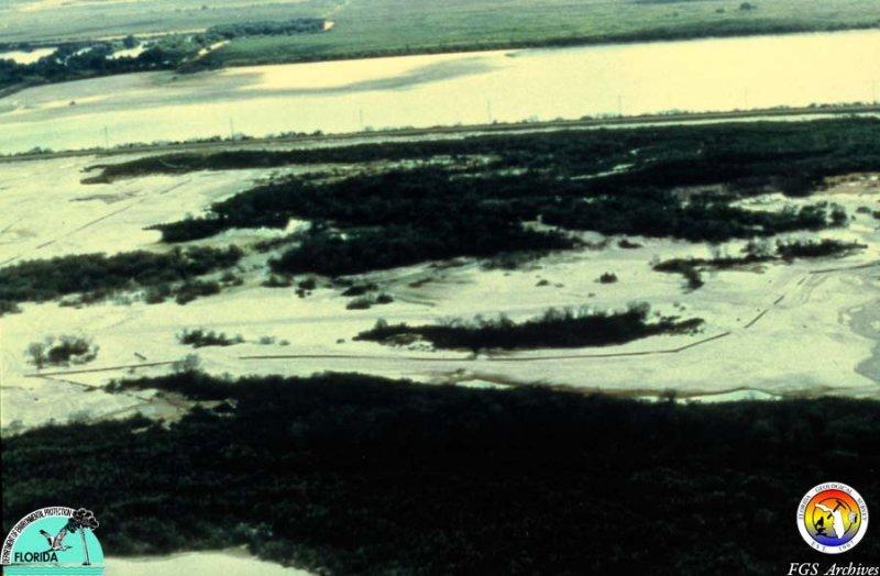 Phosphate mine sand tailings Polk Co.jpg