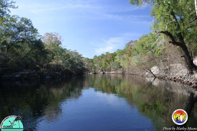 Suwannee River 2.jpg