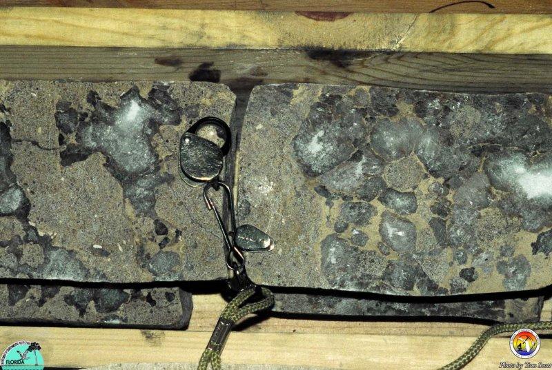 Gypsum Lower Floridan Aquifer System Dade Co.jpg