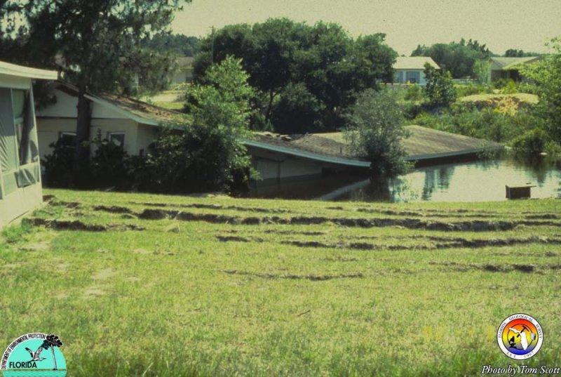 Sebring Sink.jpg