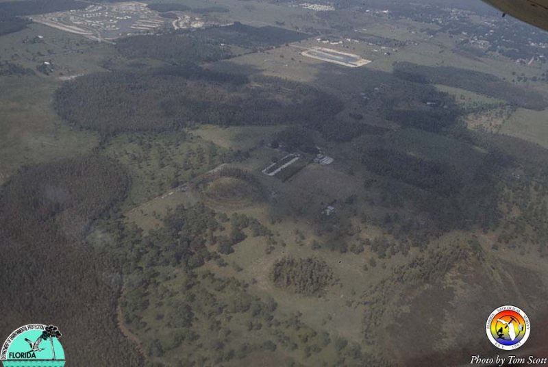 Sinkholes from the air 2.jpg