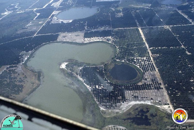 Sinkholes from the air 3.jpg