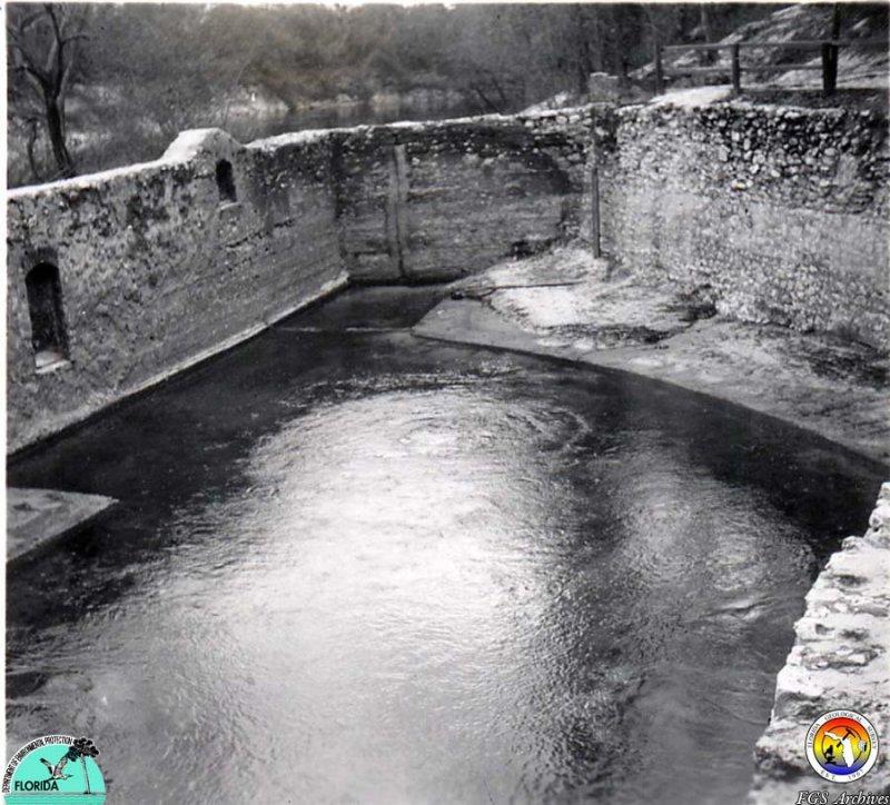 Suwannee Spring 1947.jpg