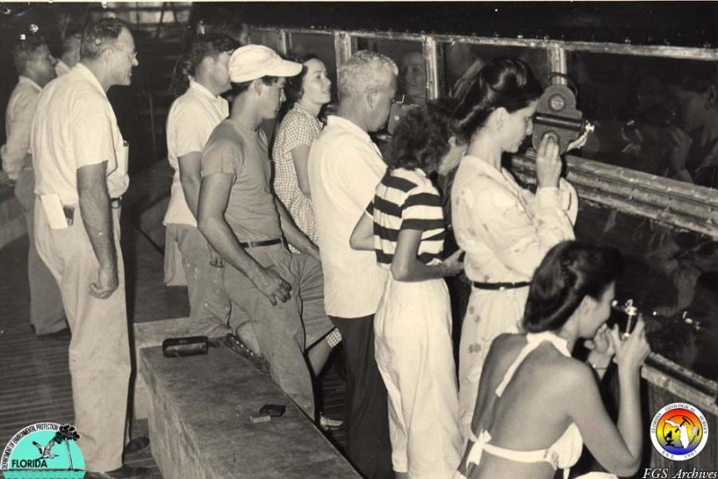 Weeki Wachee Sp Observation rm 1947.jpg