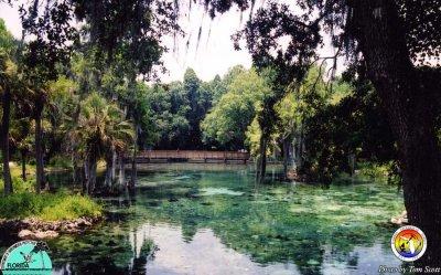 Crystal Springs.jpg