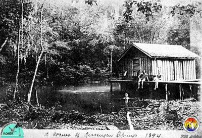 Kissengen Spring 1894.jpg