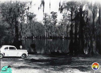 Morrison Sp 1947.jpg