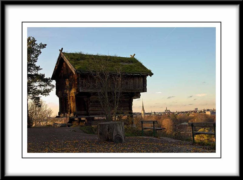 a grass roofed building...