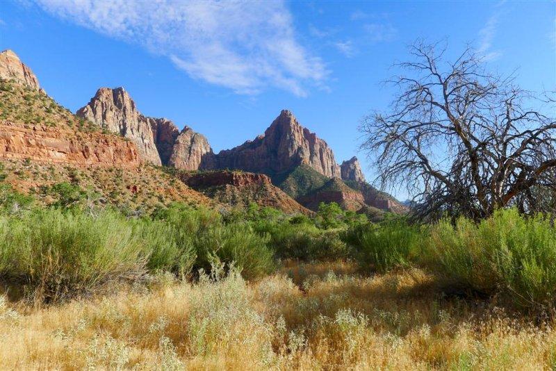 346 Zion Parus Trail 13.jpg