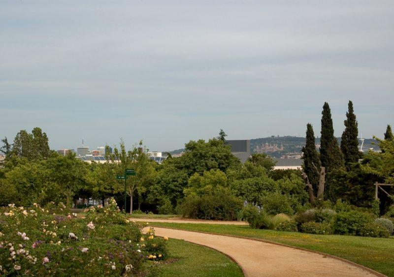 Rose Garden and Parc Cervantes