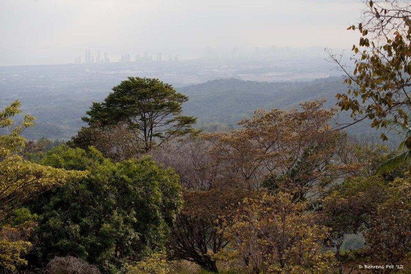 City seen from Cerro Azul