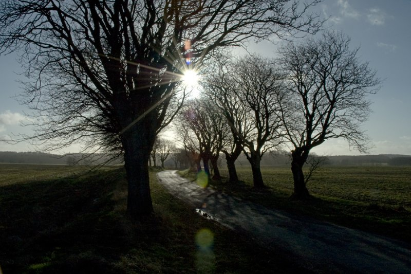 Reflection - from the sun / Reflection - fra solen