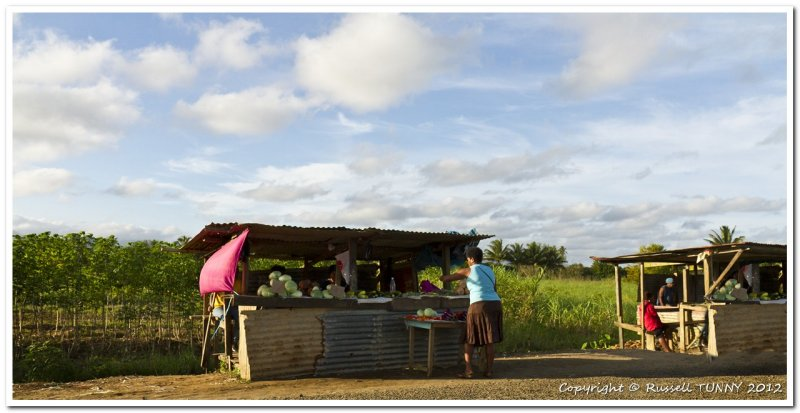 Roadside Vendors